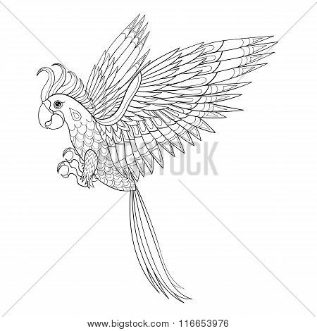 Hand drawn tribal Parrot, bird totem for adult Coloring Page in