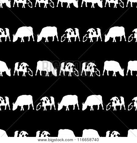 Cow And Bull Black And White Shadows Silhouette In Lines Pattern Eps10