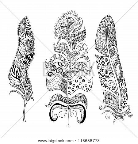 Zentangle stylized elegant feathers set. Hand drawn vintage illu