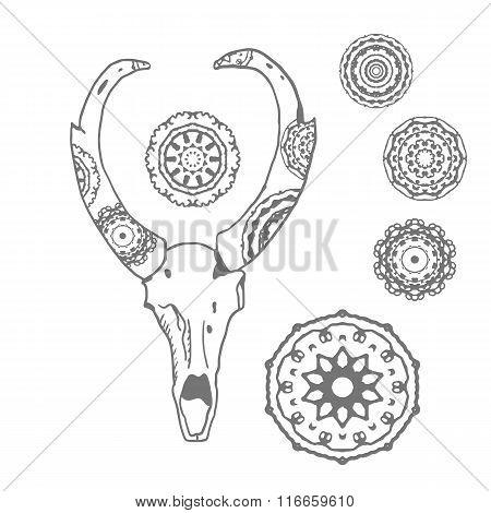 Antelope skull with mandalas