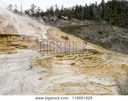 Colorful Hot Springs Terraces In Yellowstone National Park
