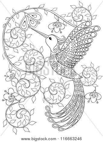 Coloring page with Hummingbird, zentangle flying bird  for adult