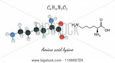 C6H14N2O2 amino acid Lysine molecule