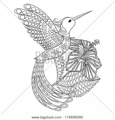 Coloring page with Hummingbird in hibiskus, zentangle illustarti