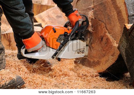 Logger With Chainsaw.