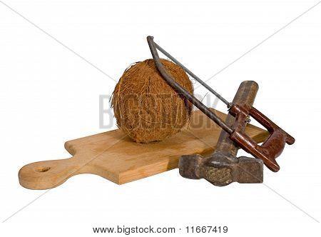 Coconut Hacksaw Hammer