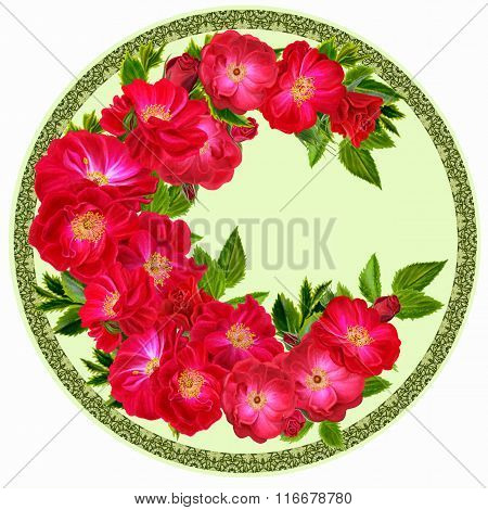 Flowers In A Circle. Round Form. Round Floral Background. A Branch Of Red Climbing Roses
