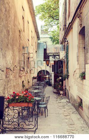 Fragment Of Cafe, Lviv, Ukraine