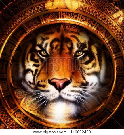 Ancient Mayan Calendar and Tiger head, abstract color Background, computer collage, Eye contact.