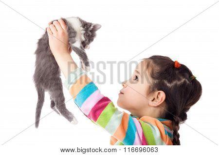 Little girl holding in hands adorable kitten