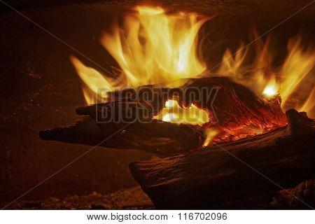 Camp Fire 137