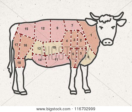 cartoon beef cut -  butcher pieces
