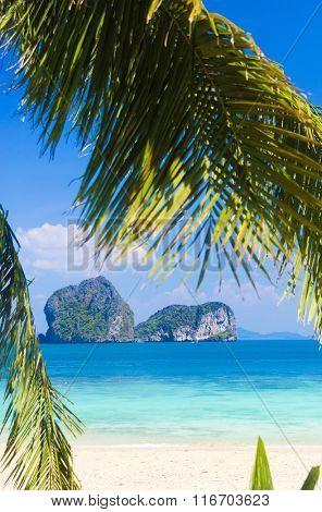 Coconut Getaway Green View