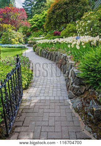 Walkway In A Spring Garden