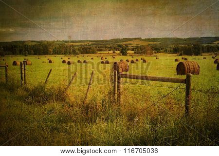 Rural Alberta farmland with a painterly vintage effect and texture.