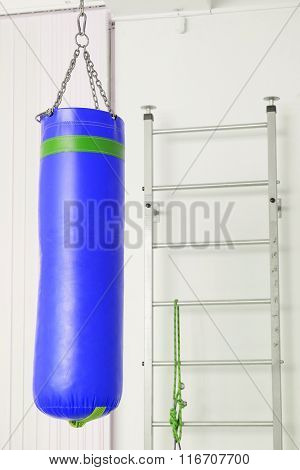 The image of a wall bars and spunching bag