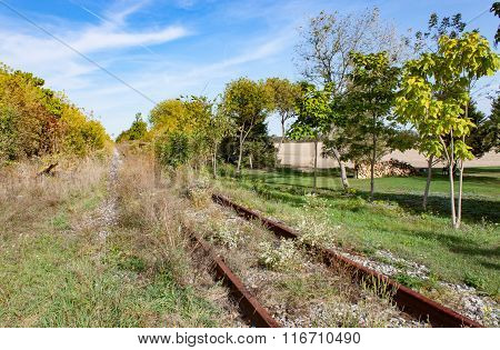 Overgrown Rusty Track In Summer