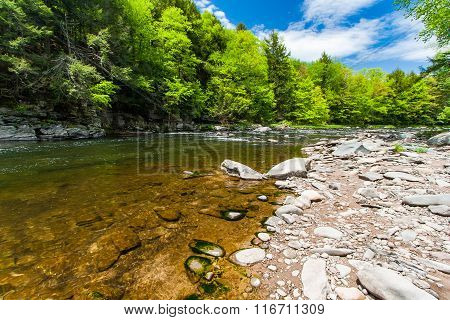 The Neversink River Gorge