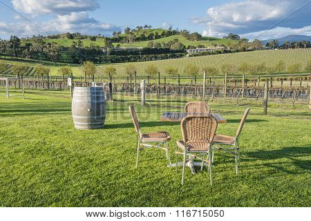 Outdoor chairs and table in a vineyard