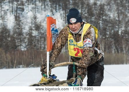 Kamchatka Sled Dog Racing. Russian Far East, Kamchatka Peninsula