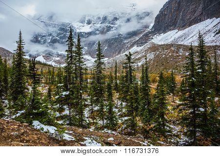Mount Edith Cavell. Cold start of autumn in Jasper Park. Snow fell in September