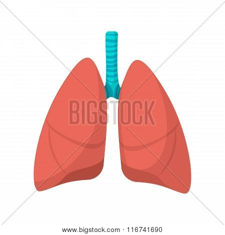 Human lungs cartoon icon