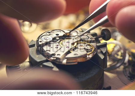 Working On A Mechanical Watch