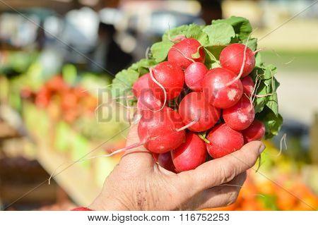 Holding fresh radish with one hand during shopping
