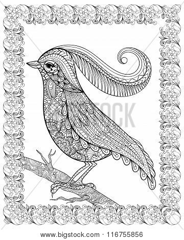 Hand drawn beautiful delicate bird sitting on a branch framed fo