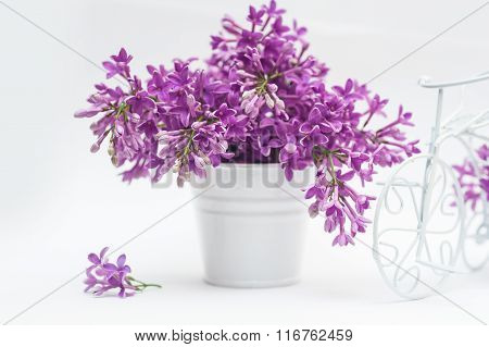 Beautiful Bouquet Of Lilac In Basket On A White Background