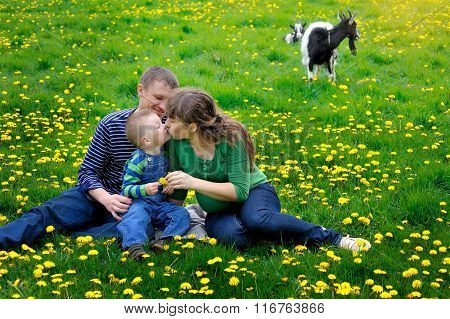Happy Young Boy Running On Meadow With His Parents