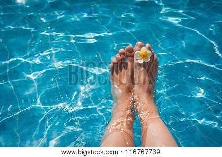 Female Legs In The Pool Water And Flower