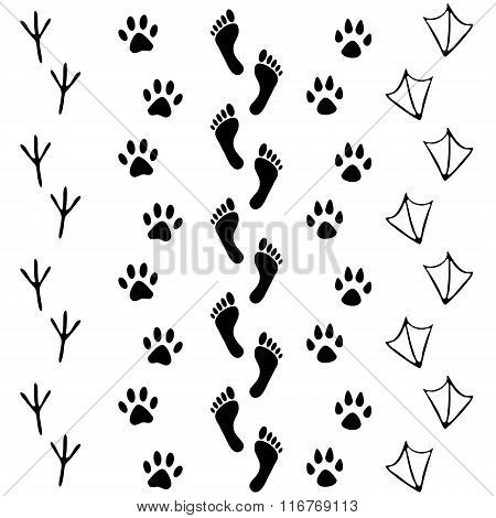 Vector set of human and animal bird footprints icon. Collection of bare human foots cat dog bird chi