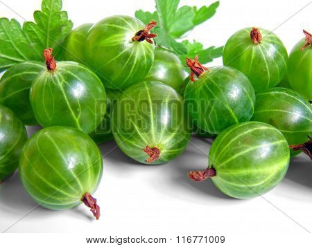 Fresh Ripe Green Gooseberries