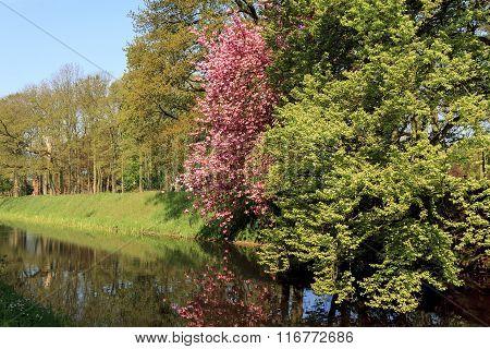 Province Of Utrecht, Netherland
