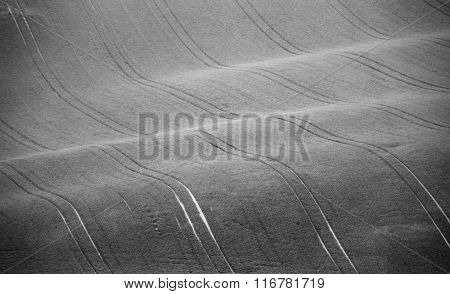 Czech Moravia Hills. Agriculture . Arable Lands In Spring.