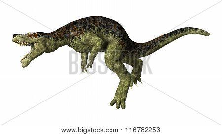Tyrannosaurus Rex On White
