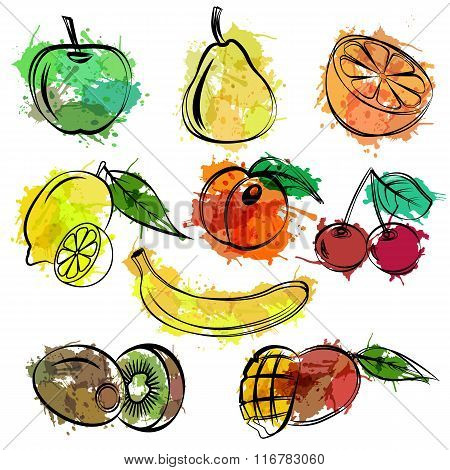 Set of sketch fruits white background
