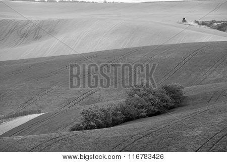 Arable Lands In Spring. Hunting Box In Moravia Hills.