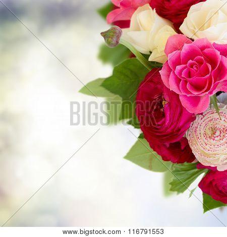bunch of pink ranunculus flowers