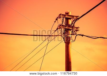 Electric pole and power line