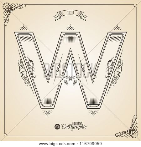Calligraphic Fotn with Border, Frame Elements and Invitation Design Symbols. Collection of Vector glyph. Certificate and Decor Design Elements. Hand written retro feather Symbol. Letter W