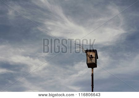 Birdhouse On Blue Sky Background