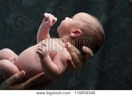 Newborn baby in arms