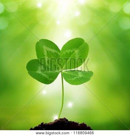 Green background of St. Patricks Day with four leaf clover