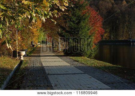 Alley in autumn park. Kiev