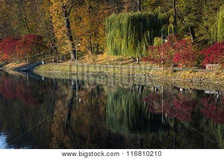 Autumn park in Feofania