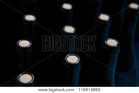Glass Wine Bottles