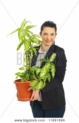 Business Woman Holding Vase With Plant