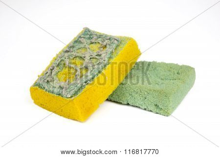 Used Sponges For Cleaning